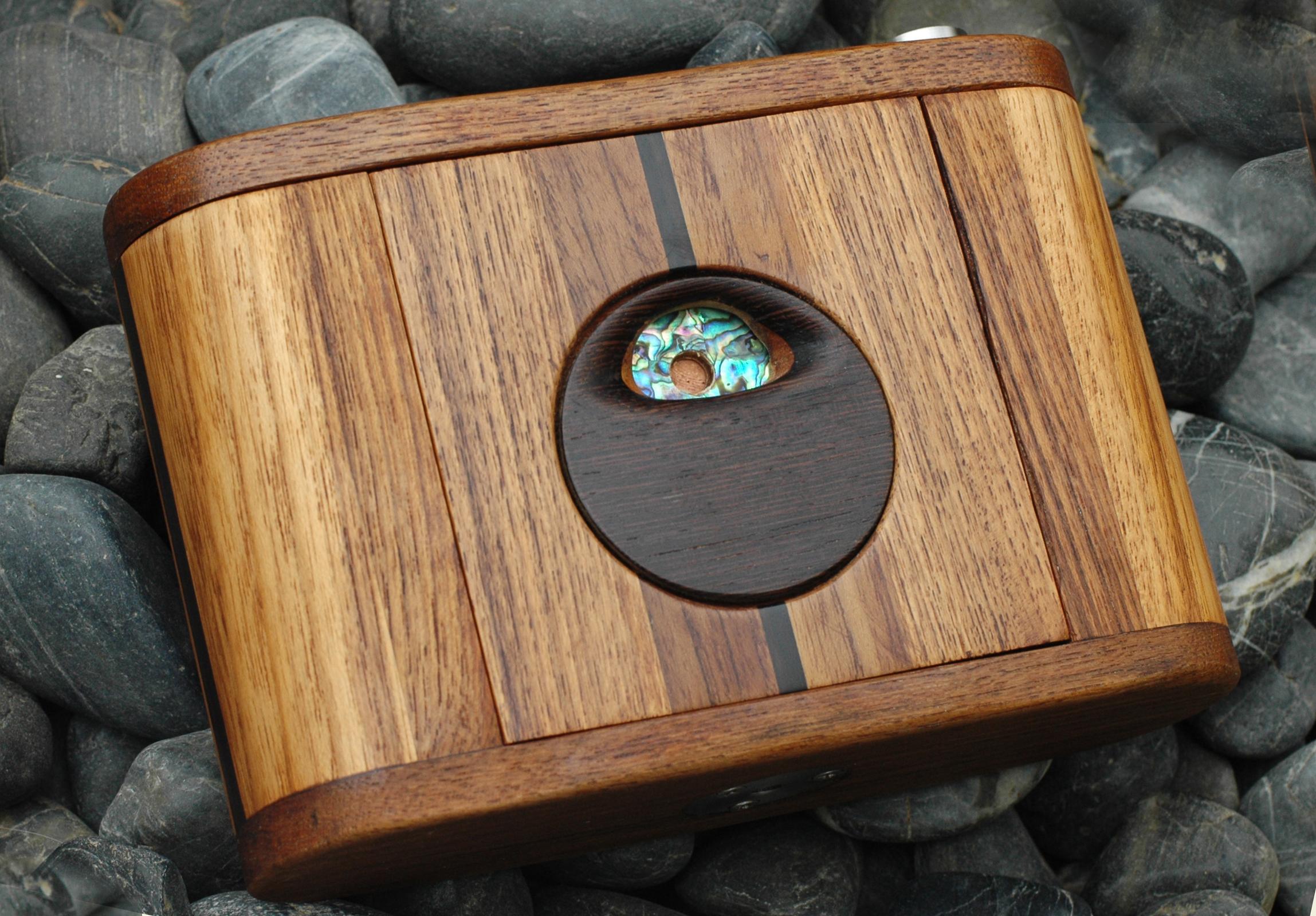 Pinhole Camera Chamaeleon Panorama 6x9-2 #119 - skink pinhole